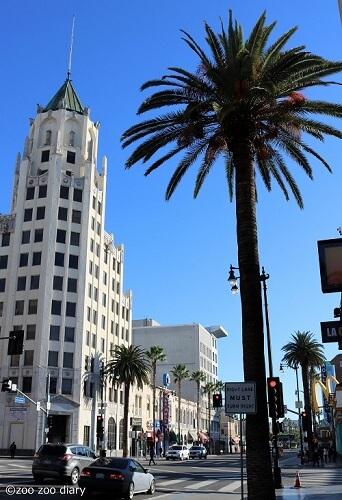 カリフォルニア州ロサンゼルス ハリウッド