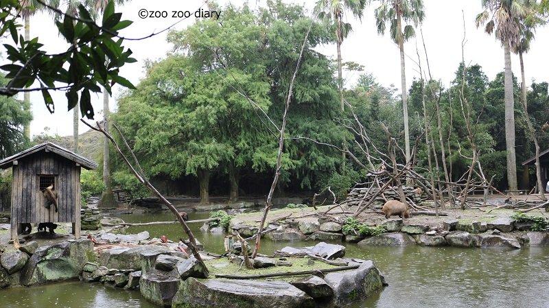 長崎バイオパーク オマキザルの島