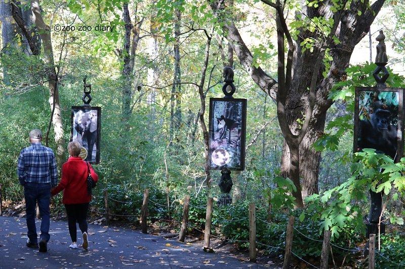 ブロンクス動物園 ゴリラフォレスト